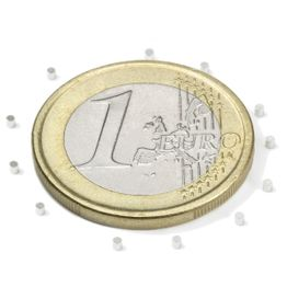 S-01-01-N Disco magnetico Ø 1 mm, altezza 1 mm, neodimio, N45, nichelato