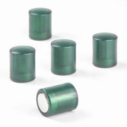 M-PC/greent, Bordmagneten cilindrisch, neodymium magneten met kunststof kapje, Ø 14 mm, transparent groen