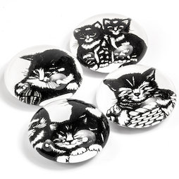 LIV-139, Gattini, magneti decorativi con motivi di gatto, set da 4