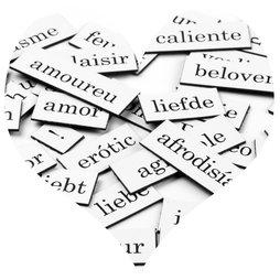 LIV-56, Magnetwörter Liebe, Wörter, Silben und Satzzeichen, 510 Teile, in verschiedenen Sprachen erhältlich
